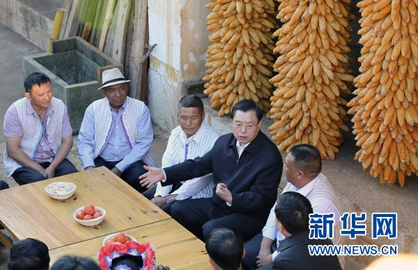 张德江强调:扎实推进县级人大工作完善发展
