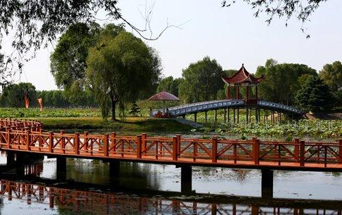 """""""生态湿地 美丽家园""""洪湖湿地影展征稿启事"""