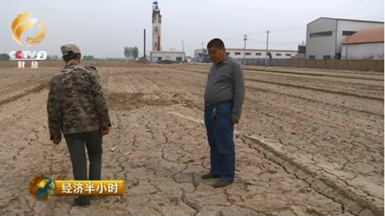 现在,李洪生正和技术人员讨论还能种一些什么作物,但是面对着400亩盐碱地,他们苦无对策。