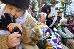 韩国慰安妇悼念地震遇难者