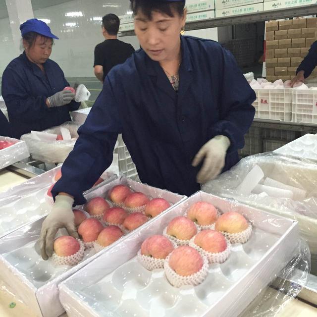 第十四届栖霞苹果艺术节开幕