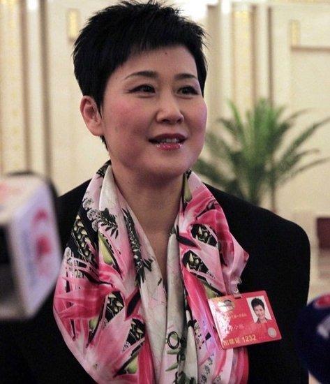 两会女企业家代表风采盘点:李小琳人气最旺