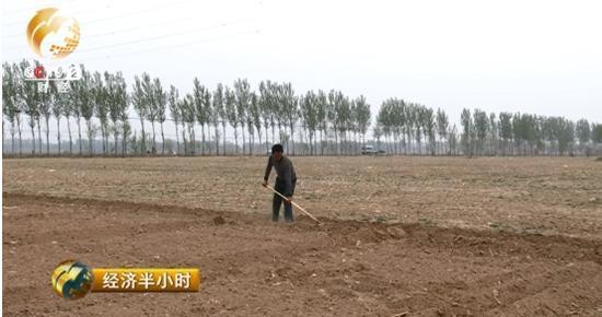 每亩地三次施肥要支出300元左右,喷农药12次支出70元,这仅仅是物料的成本,而人工成本可就高得多了。