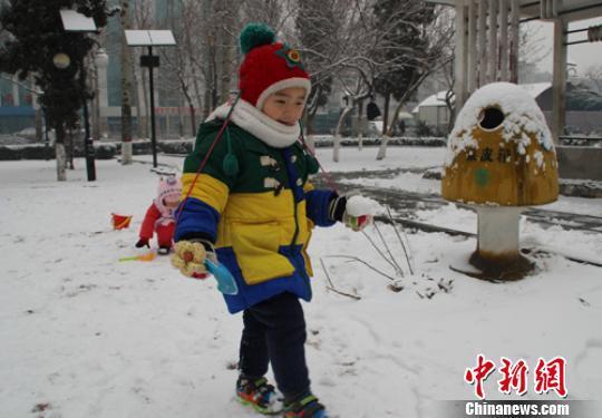 """河北保定首雪迟到百日 市民称""""郁闷一扫而光""""(图)"""