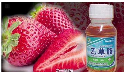央视记者买8份草莓 经检测均含致癌农药
