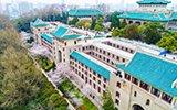 武汉大学樱花初绽美到窒息 数万人涌入赏花