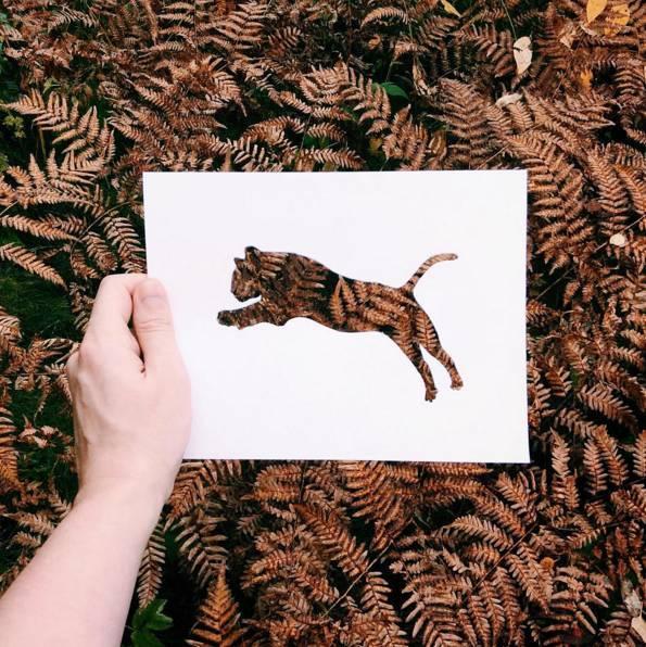 小松鼠剪纸图案大全