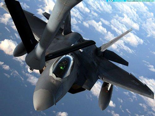 """美国宣布无限期停飞F-22""""猛禽""""战斗机(图)"""