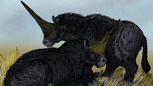 毁童年:科学家发现独角兽头骨化石形如犀牛而非马