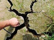 干旱造成的裂痕可伸进拳头