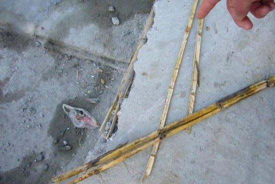 泰州一车祸撞破豆腐渣工程:芦苇杆当钢筋筑堤坝