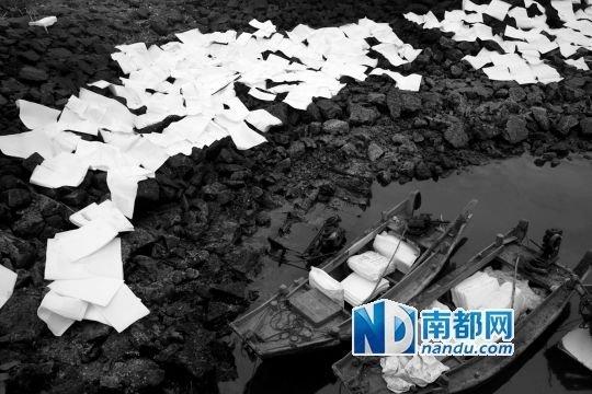 在青岛胶州湾畔放置着大量吸油毡用于清理海面上的原油污染。新华社发