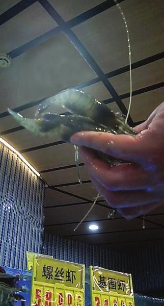 """记者暗访超市:死虾过质检被称""""醉虾""""(图)"""