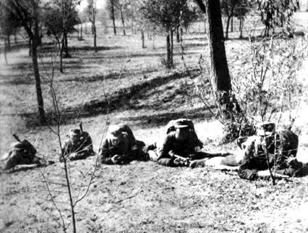 对日作战牺牲最大的第51军
