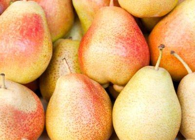 养生:夏季饮食小建议 中医10种瓜果养生食疗方