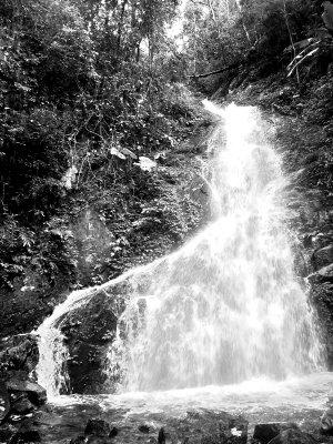 热带雨林峡谷手绘素材