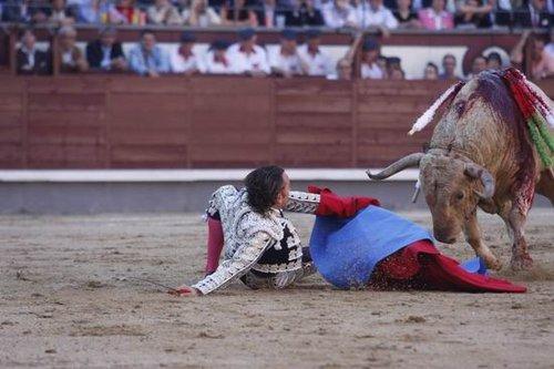 西班牙著名斗牛士被公牛刺穿咽喉生还(组图)