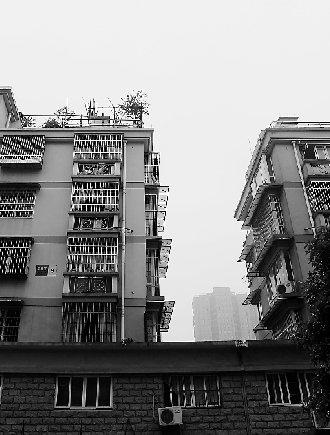 杭州63岁大伯顶楼平台种苗 不慎失足坠楼身亡