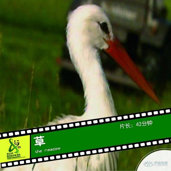 2011雅安电影节国际参展影片《草》