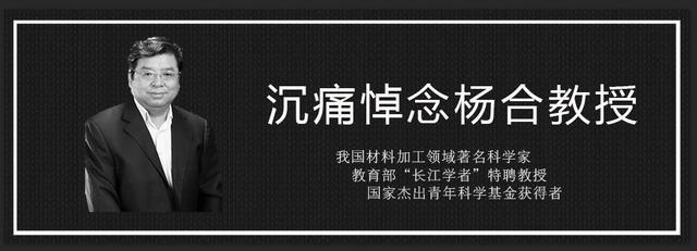 中国材料学家杨合教授去世享年55岁 曾助四代机攻关