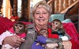 53岁女子抚养6只猴子 用化妆品品牌给猴起名