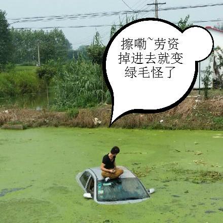 南京一小车为躲避三轮车驶入池塘中