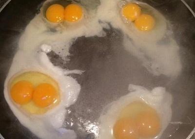 女子连打4只鸡蛋均为双黄蛋几率十亿分之一(图)