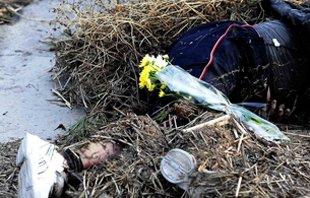 海啸袭击后的日本仙台灾后景象