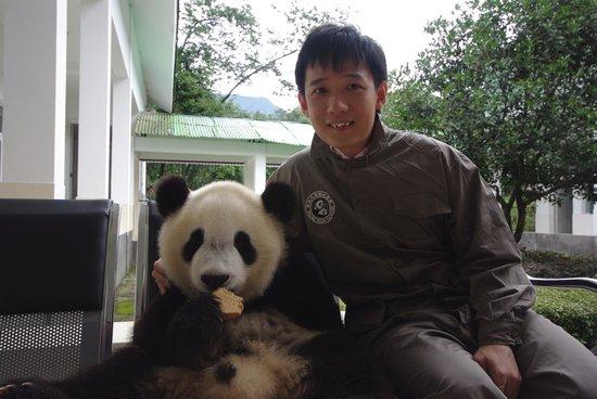 第四届动物与自然电影周名人明星认养大熊猫