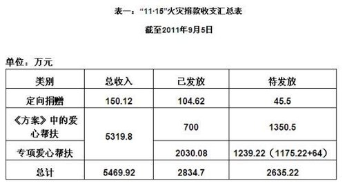 """上海大火捐款收支公布 政府救灾被疑""""零成本"""""""