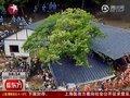 视频:日本地震后谣言四起 真相粉碎震后谣言