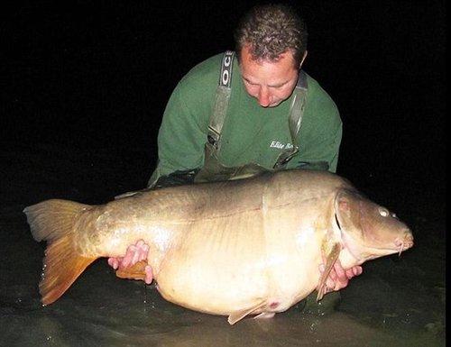 英国男子钓到45公斤鲤鱼打破世界纪录(图) - 乐园 - 高山流水