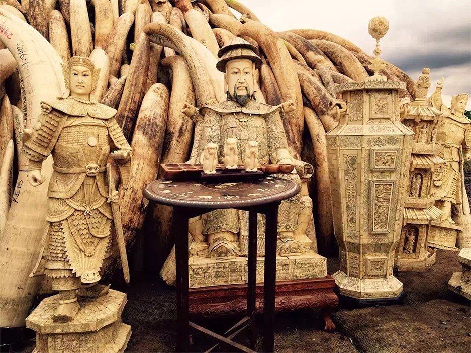2021-03-09,内罗毕国家公园待焚烧的储备象牙。