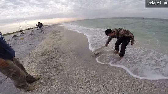 美渔夫善心救搁浅小鲨鱼反被咬伤脚踝
