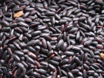 养生:滋阴补肾补血长寿 黑米的功效与作用