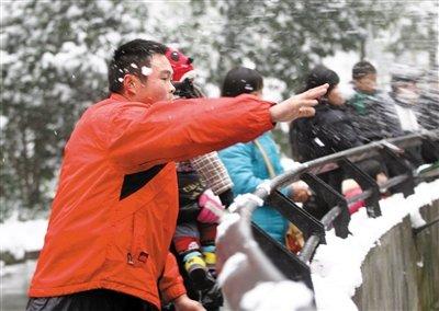 杭州动物园游客搓雪球砸狮子取乐(图)