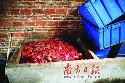 记者曝光死猪拌剧毒农药腌制腊肉全过程(图)