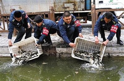 北京什刹海水草疯长 每天捞走40吨