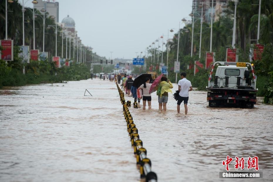 【图片报道】台风莎莉嘉重创海南 农户31头牛被电死 - 耄耋顽童 - 耄耋顽童博客 欢迎光临指导