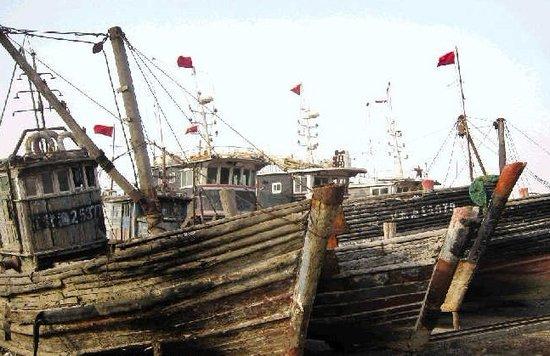 媒体称我国近海无鱼可捕致渔民越界韩国捕捞