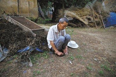 淮河污染致癌症高发:沈丘县1年因癌死亡两千人