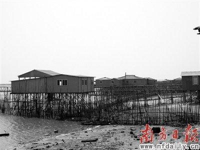 汕头新津河畔,吊脚楼成排(大图)。外砂河东溪洲上的违章别墅已存在很长时间(小图)。 杨建华 摄