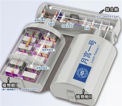 中国掌握太空维生核心技术 实现水氧100%循环