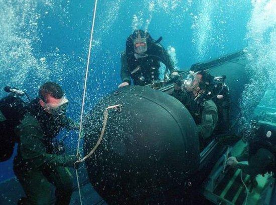 美国海军海豹突击队(Navy Seals)资料(组图)