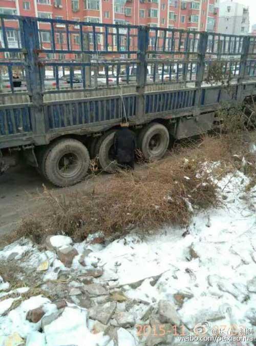 长春男子跪着吊死于路边货车 警方:死因在调查