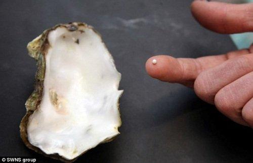 男子吃生蚝意外发现珍珠 概率仅百万分之一(图)   中国新闻网