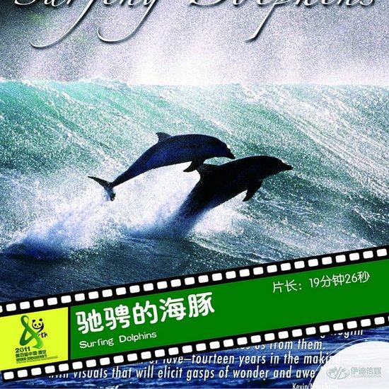 2011雅安电影节国际参展影片《驰骋的海豚》