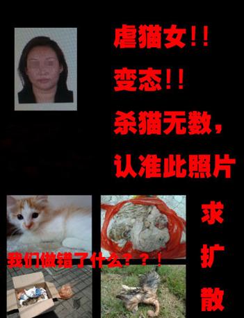 虐猫女残杀数百只猫 遭围堵躲进派出所后仍挑衅