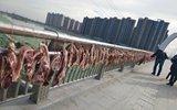 任性!男子大桥栏杆上晒腊肉 绵延200米