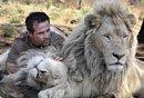 牛人与狮子共同生活